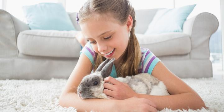 Little girl & rabbit